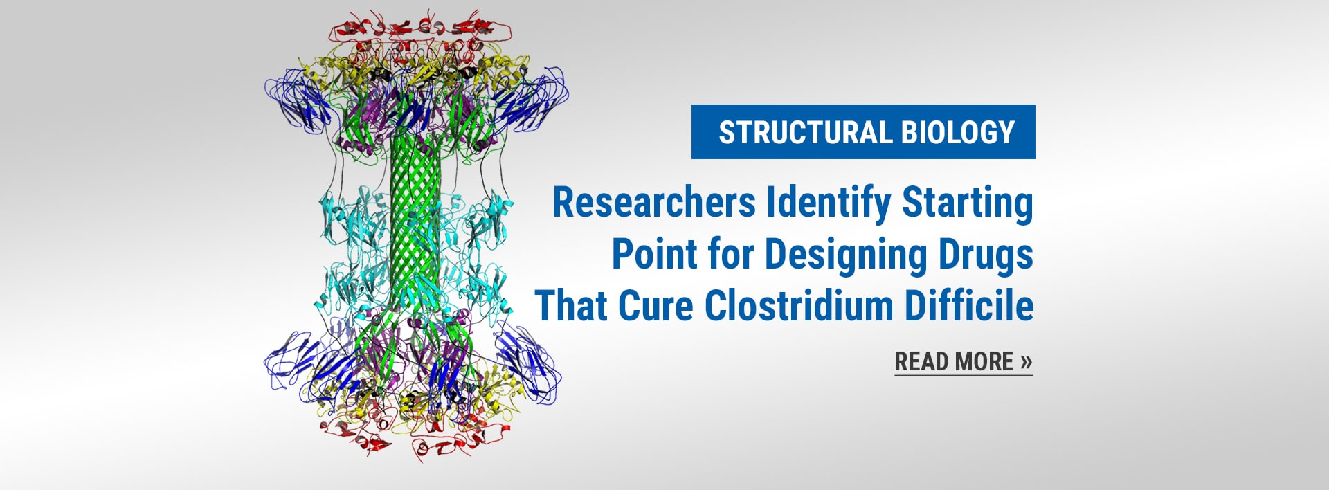 Structura Biology News: Researchers Identify Starting Point for Designing Drugs That Cure Clostridium Difficile