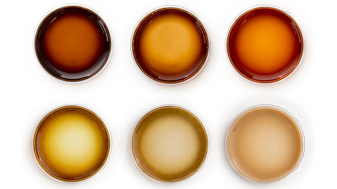 samples showing different levels of melanin