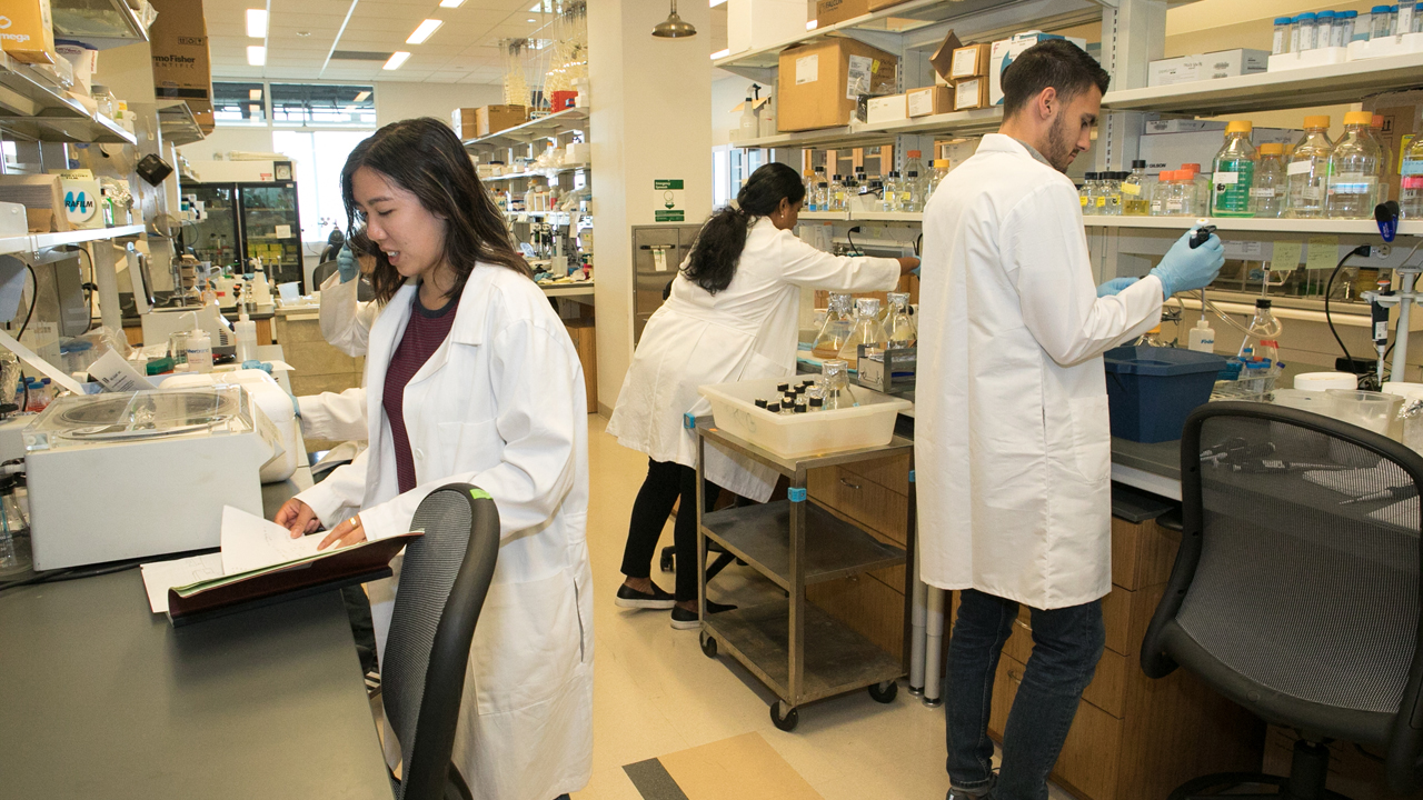 student conducting research in a structural biology lab