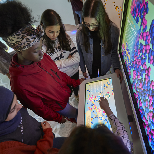 students interacting with an exhibit in the ASRC Illumination Space